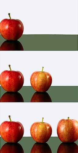 Counting apples image